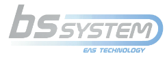 BS System Logo